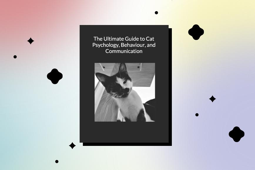 Книга про домашних животных The Ultimate Guide to Cat Psychology, Behaviour, and Communication