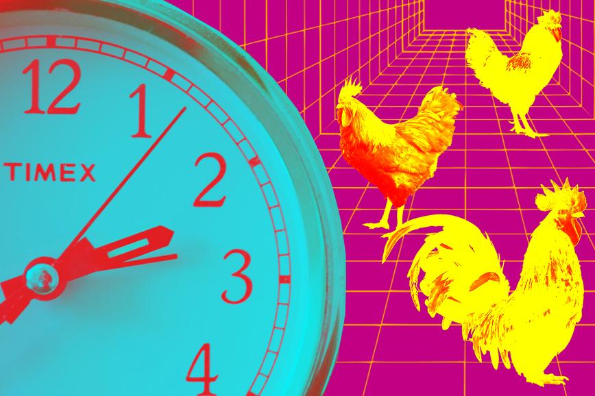 Определение оптимального времени подъёма —один из утренних ритуалов