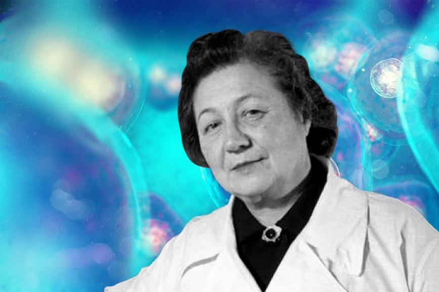 Женщины-учёные: Зинаида Ермольева