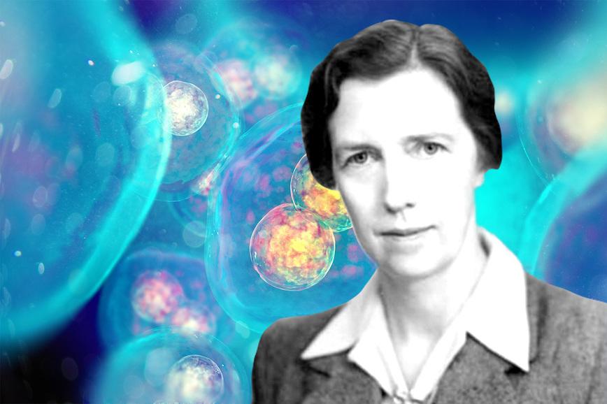 Женщины-учёные: Мэри Люси Картрайт
