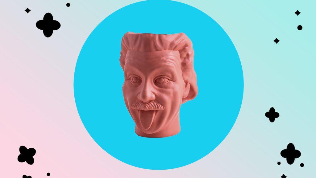 Ваза для цветов в форме головы Эйнштейна