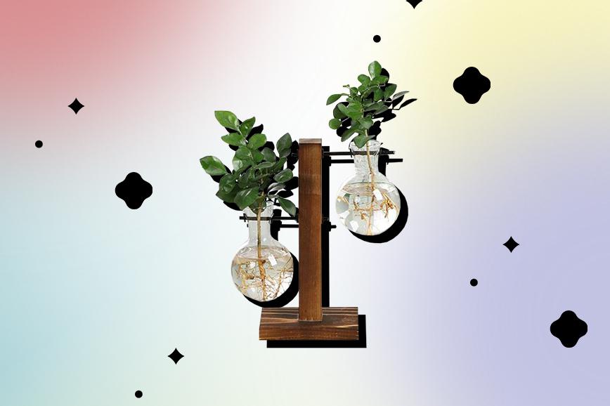 Ваза для растений на кухню