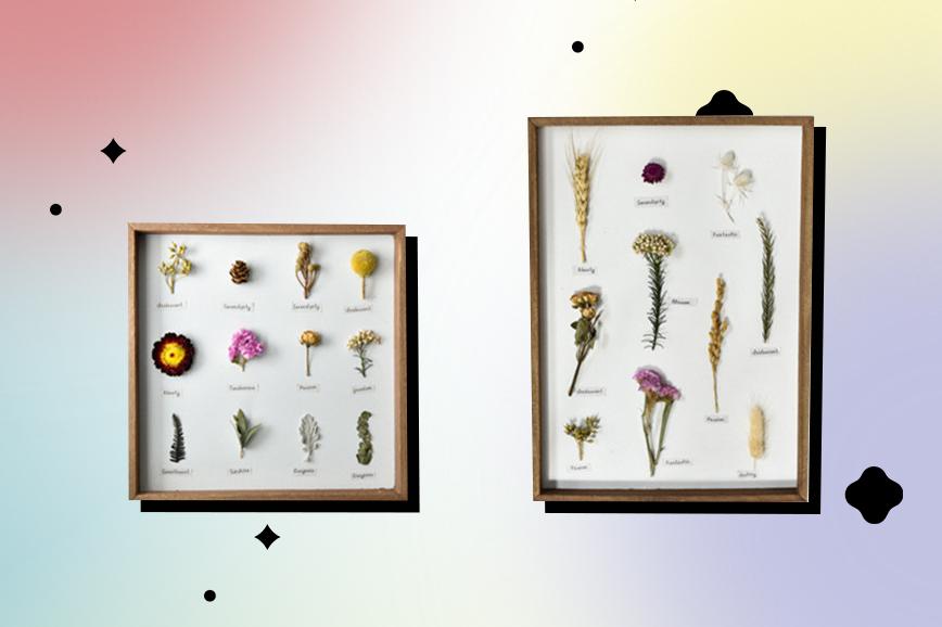 Как украсить гостиную: гербарий для дома