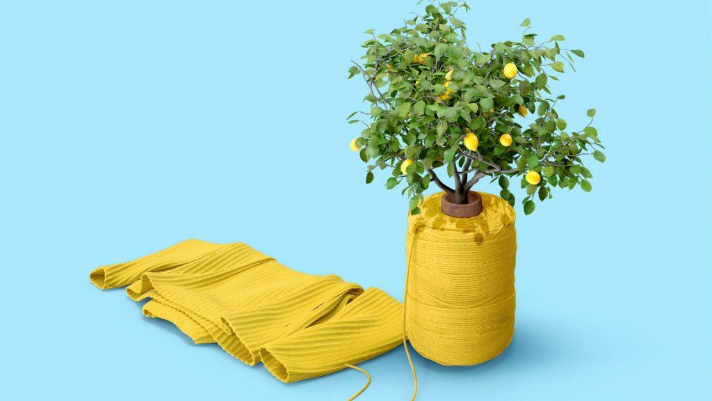 9 мифов об экологичной моде