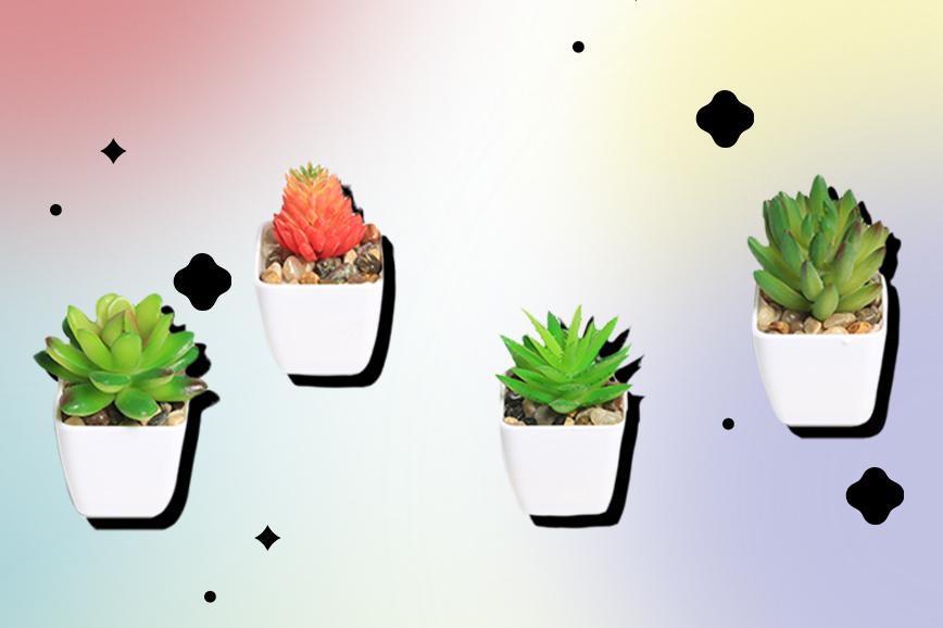 Искусственные растения для дома