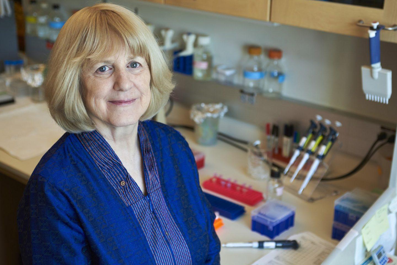 Учёная Мэри-Клэр Кинг доказала, что рак груди может передаваться по наследству из-за мутаций в гене.